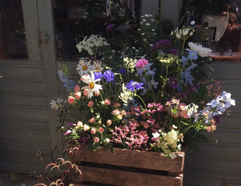Kate Lindsey, the eco-friendly florist who knows how to make romance blossom