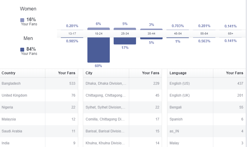 Screenshot Facebook Insights overview audience demographics