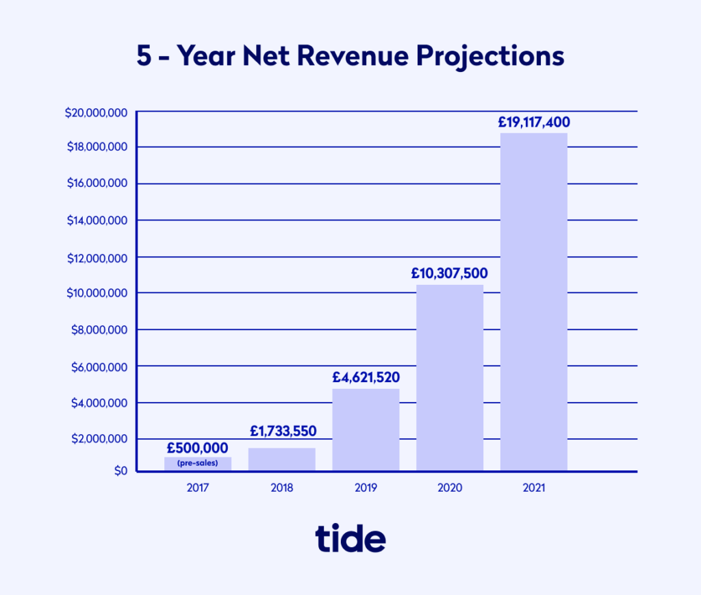 Example of 5 year net revenue projections