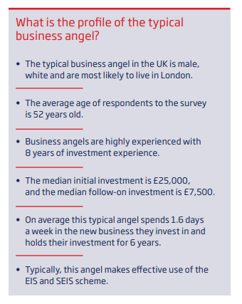 Table showing the profile of a typical business angel