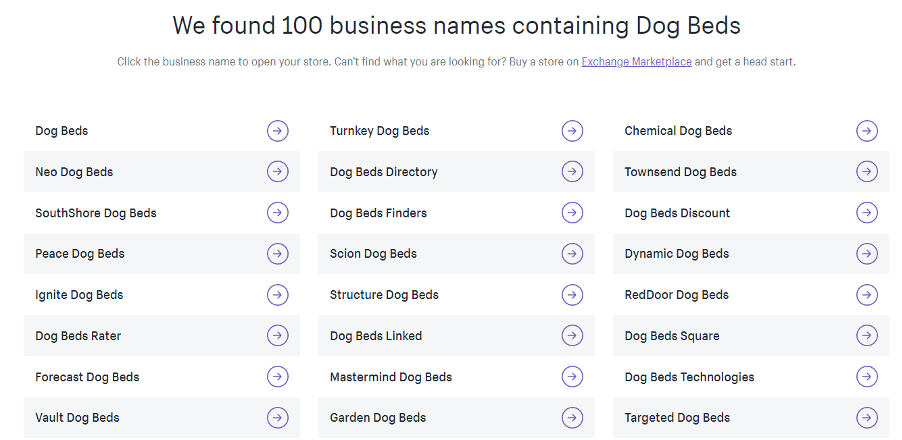Examples from Shopify's business name generator