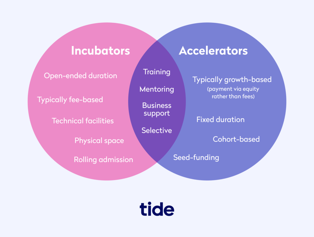 Diagram showing the difference between incubators and accelerators
