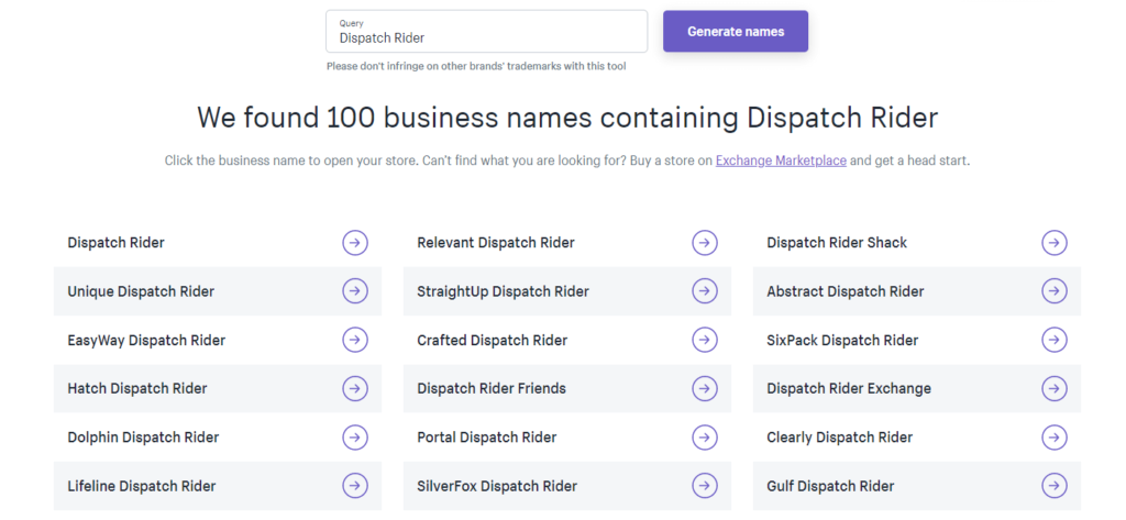 Screenshot of Shopify business name generator search web application user interface
