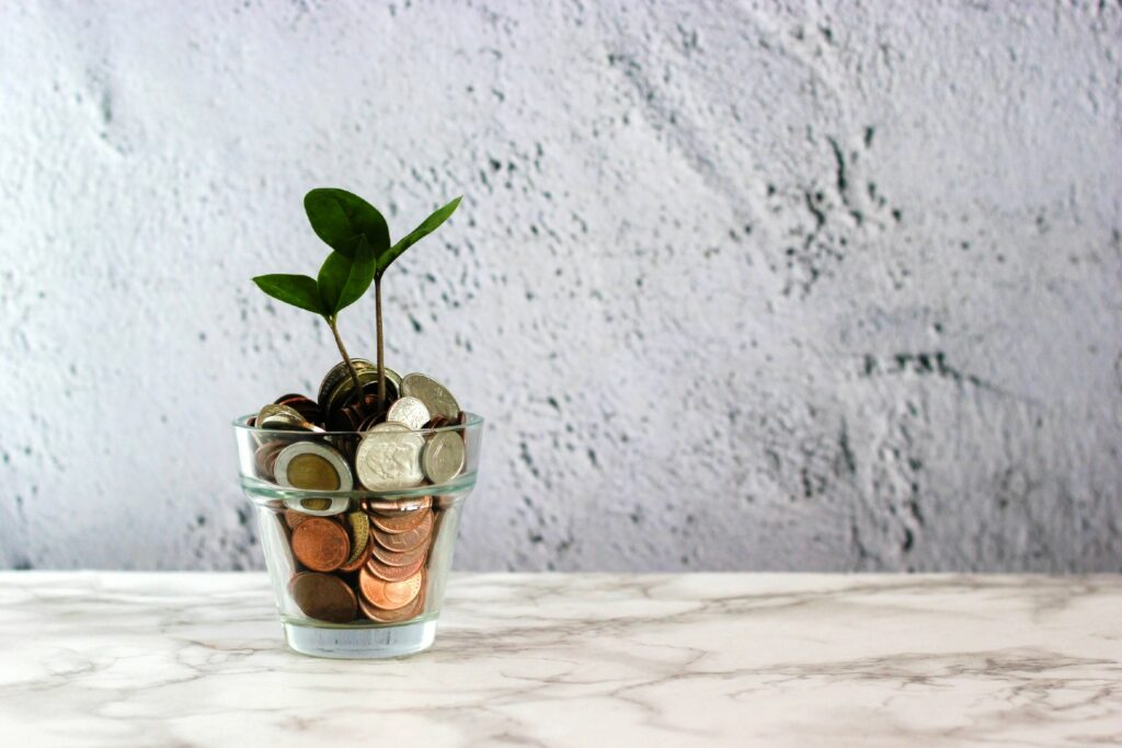 Coins and plant in a glass jar. Photo from Unsplash